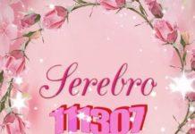 SEREBRO— 111307