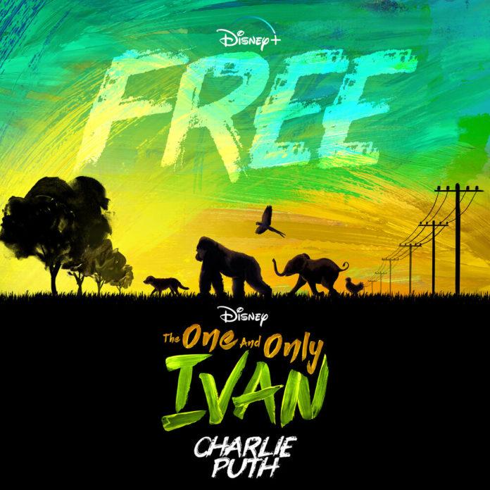 Charlie Puth Free 696x696 - Charlie Puth - Free